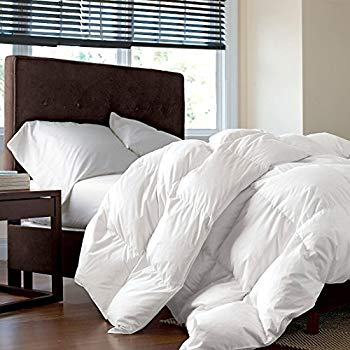 King Baffle Box Down Comforter Plus Free Duvet Cover Down To Basics